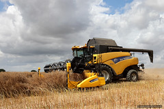 New Holland Combine (roddersdad) Tags: august lincolnshire fields agricultural 2012 harvesttime combineharvester canonef24105mmf4lisusm agriculturalvehicles canon5dmark2 wwwimagesbyclivecouk copyrightclivejmaclennan newhollandcr9080