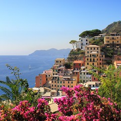 Summertime at Riomaggiore in the Cinque Terre National Park (Bn) Tags: world ocean park pink flowers blue houses sea summer vacation sky orange sun sunlight holiday flower tower heritage colors beautiful weather train buildings walking coast boat high warm mediterranean italia day sailing ship torre hiking path five character liguria ngc hike case cliffs lovers quay historic bougainvillea unesco via clear vineyards national wharf terre botanic mountainside overlooking quaint inspire incredible viewpoint picturesque coloured topf100 trial cinque adriatic riomaggiore italianriviera torri yellew dellamore 100faves 50faves guardiolas
