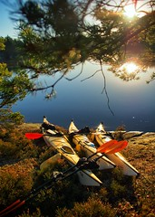Kayaks drying in the sun (cablefreak) Tags: morning lake nature water island kayak sweden outdoor sunny 12mm paddling svartedalen friluftsliv mzuiko