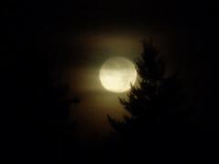 Happy Halloween (judith74) Tags: sky moon mond himmel luna morgen vollmond hiwosomoshots