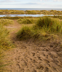 "Tentsmuir Beach • <a style=""font-size:0.8em;"" href=""http://www.flickr.com/photos/53908815@N02/8145149499/"" target=""_blank"">View on Flickr</a>"