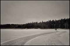 Ice walk (Appe Plan) Tags: road winter sky bw white lake snow black cold tree ice nature clouds grey frozen nikon couple view sweden pair karlstad plow vrmland d700 nikkor28300mm
