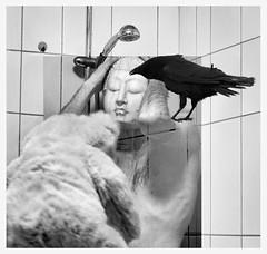 Abduction (ingi örn hafsteinsson) Tags: bear portrait blackandwhite bw bird photoshop canon shower mask teddy alien reykjavik photograph crow buddah abduction chomsky expressiv abducted 24104mm ingiörn ingiörnhafsteinsson