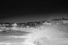 Let's Go For A Walk!! (BGDL) Tags: blackandwhite beach monochrome windy stormy esplanade prestwick nikkor18105mm13556g nikond7000 bgdl elementsorganizer11