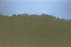 untitled (E.M. Ramirez) Tags: blue sky film fog forest 35mm landscape bay kodak grain lofi peak eerie area grizzly expired disposable tilden expired2008
