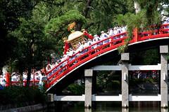 Sumiyoshi-matsuri, Sumiyoshi-taisha, Osaka (jtabn99) Tags: mikoshi carrythemikoshi sumiyoshitaisha soribashi 20160801 osaka japan nippon nihon festival natsumatsuri summer