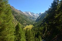 Pomeriggio d'estate in Valnontey (supersky77) Tags: valnontey granparadiso parconazionaledelgranparadiso pngp alpi alps alpes alpen cogne aosta valledaosta valleedaoste verde green blue glacier ghiacciaio