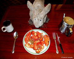 Dr. Takeshi Yamada and Seara (Coney Island Sea Rabbit) at the East Ocean Buffet Chinese restaurant in Brooklyn, NY on April 3, 2016.  20160403Sun DSCN4943=-2025C. lobster Cantonese (searabbits23) Tags: searabbit seara takeshiyamada  taxidermy roguetaxidermy mart strange cryptozoology uma ufo esp curiosities oddities globalwarming climategate dragon mermaid unicorn art artist alchemy entertainer performer famous sexy playboy bikini fashion vogue goth gothic vampire steampunk barrackobama billclinton billgates sideshow freakshow star king pop god angel celebrity genius amc immortalized tv immortalizer japanese asian mardigras tophat google yahoo bing aol cnn coneyisland brooklyn newyork leonardodavinci damienhirst jeffkoons takashimurakami vangogh pablopicasso salvadordali waltdisney donaldtrump hillaryclinton polarbearclub