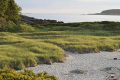 DSC_0148 (RYANinHD_87) Tags: hermit island campground beach maine coast dunes sanddunes sand sandunes seagrass dunegrass