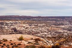 Canyonlands near Horseshoe Canyon (fate atc) Tags: canyonlands desert glencanyon horseshoecanyon usa utah waynecounty autumn