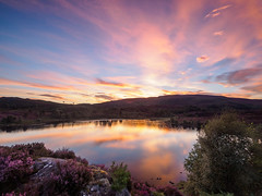 Loch na Ba Ruaidhe at Sunset - Yet Again! (Highlandscape) Tags: em5 landscape sunset culnakirk sundown outdoor rural rocks httphighlandscapezenfoliocom reeds cloud twilight places grass olympus natural lighting drumnadrochit serene water beauty colour loch trees summer scotland still dusk calm reflection sky features ecosse countryside na ba ruaidhe highland lake ripples rock heather purple orange pink yellow blue