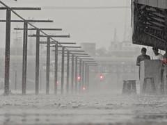 Heavy rain in Mymensingh City,Bangladesh (Shafi Uddin1) Tags: rain heavyrain mymensinghcity nature naturalwater world beautyofnature beautiful bangladesh city citylife citylight streetsofcity ngc supershot nikon horizontal nikkor nikoncoolpixl830 nikonlens nikoncoolpix ewa annie birgitta jim john terry duane ann llia hugi daniele charles sandro shibbir spuddie7 julie