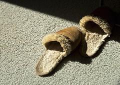 Talking Feet (Padmacara) Tags: d750 nikkor24120 slippers carpet shadowlight contemplative indoor winter wool fuzzy
