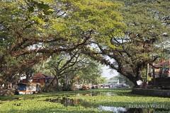 Alappuzha (Rolandito.) Tags: southern india kerala backwaters alleppey alappuzha