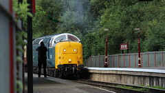 Getting the picture (Duck 1966) Tags: pinza class55 deltic royalscotsgrey ortonmere nvr nenepark diesel locomotive
