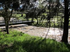 water under the bridge looking west (troggonk) Tags: ginnderra creek act sept 2016 ngunnawal gungahlin water erosion maintenance