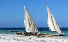 Zanzibar ...l'isola che c' ... (Augusta Onida) Tags: pwanimchangani spiaggia beach barca boat dhown sambuco vela sailing zanzibar tanzania africa panorama landscape mare sea