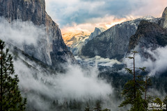 Yosemite Valley Clearing Storm (Riven Imagery) Tags: 5d 5d3 3 mk mark iii canon yosemite yosemitenationalpark mist valley fog el capitan cathedral rocks morning storm clearing clouds green winter early beautifu magnificient magical stunning glorious wonderful wonderous fantastic fabulous terrific amazing dramatic outdoor landscape mountain forest sunrise ice snow tunnel view tree