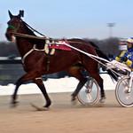 37 - race 12 - Casino Showgirl w/ Larry Lake thumbnail