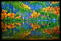 Chapel Pond (Ronaldo F Cabuhat) Tags: travel autumn trees vacation ny newyork reflection nature water forest canon photography rocks adirondacks foliage upstatenewyork canonef1635mmf28liiusm chapelpond canoneos5dmarkii wideangleautumninnewyork