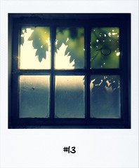 "#DailyPolaroid of 11-10-12 #13 • <a style=""font-size:0.8em;"" href=""http://www.flickr.com/photos/47939785@N05/8080693063/"" target=""_blank"">View on Flickr</a>"
