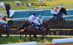 Hexham Racecourse (HKW Photography) Tags: ireland england horse irish france english race french lost place loser racing jockey winner british horseracing win lose rider racecourse trainer canter winning owner racer gallop placing hexham northeastengland hexhamracecourse hannahwatson hkwphotography