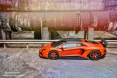 DMC Lamborghini Aventador LP900 pictures video