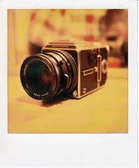 My new love (santisss) Tags: polaroid sx70 hasselblad polaroidsx70 px70 impossibleproject theimpossibleproject colorprotection hasselbladcx3 pxprotection