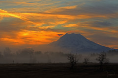 Mt Rainier 10-18-12 (1riverat) Tags: trees sun mist mountains nature silhouette fog sunrise canon landscape mood atmosphere rainier washingtonstate mtrainier t4i