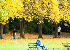 Three's not always a crowd! (Steve-h) Tags: park trees ireland ladies girls people dublin man art tourism nature coffee leaves yellow canon eos design newspaper women europa europe zoom eu tourists autumncolours telephoto paths recreation benches raincoat railings aerlingus anorak ststephensgreen steveh canonef100400mmf4556lisusm canoneos5dmkii canoneos5dmk2 october2012