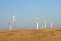 Montezuma Hills Wind Farm (Solano County, California) (cseeman) Tags: california energy wind alternativeenergy installation farms agriculture turbine windturbine windfarms windpower windenergy renewableenergy greenenergy solanocounty montezumahills greenagriculture californiawindenergy californiaalternativeenergy montezumahillswindfarms10132012 montezumahillswindfarm