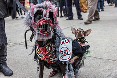 Zombie Dogs (dtstuff9) Tags: city toronto ontario canada halloween square hall costume blood nathan zombie walk phillips 2012