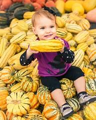 Pumpkin Patch (hall.chris25) Tags: autumn orange baby color fall smile canon happy october infant child 28mm pumpkins harvest squash 7d farms underwood