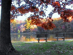 (cscott_va.) Tags: virginia sherandolake fall2012