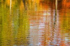 Amsterdam Vondelpark (udo geisler) Tags: amsterdam herfst reflexions vondelpark