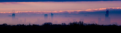 Cloud City (Out Of Chicago) Tags: autumn trees panorama distortion chicago hancockbuilding fall silhouette skyline clouds buildings geese haze shadows pano searstower shapes pinksky pinkclouds 2x cloudlayer 5dmarkii willistower 70200mmii
