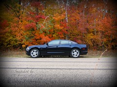 Fall Charger (Snapshots by Nixy J Morales) Tags: charger 2011 picmonkey