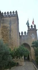 0266-ANDALUCIA-(OCTUBRE-2012)-P1000899 (fotoisiegas) Tags: paisajes naturaleza andalucia cordoba toros mezquita olivos pueblos cazorla parques dehesas sierradesegura fotoisiegas