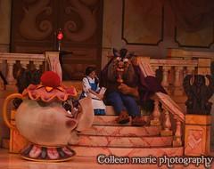 12disneyworld120 (GatorWrangler) Tags: disneyworld monorail epcot mgm mnsshp landscape stitch countries china japan norway safari hallowishes merida brave rapunzel tangled eugine tiana naveen waterfall ariel cinderella canada mulan snake giraffe rhino fireworks mickey piglet pooh goofy pluto hook ghosts jafar magickingdom animalkingdom hollywoodstudios beautyandthebeast undertheseajourneyofthelittlemermaid junglecruise cinderellacastle lionking mounteverest bootoyouhalloweenparade flynnrider littlemermaid snowwhite newfantasyland ericscastle beastscastle beourguest treeoflife tumblemonkeys hauntedmansion peterpan