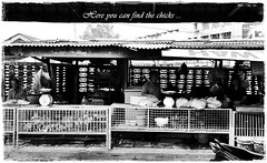 Chicken Sellers (J2Kfm) Tags: bw photography market streetfood ipoh perak pasirputeh