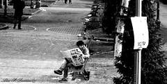 The newspaper (Alex S. Severino) Tags: park street blackandwhite bw parco black newspaper blackwhite tranquil biancoenero giornale tranquillit