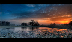 Attingham Park Sunrise (JasonPC) Tags: park winter sunrise nikon frost shropshire shrewsbury icy attingham atcham d700
