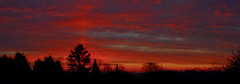 Daybreak from the bedroom window (stumpyheaton) Tags: pink trees red sky panorama silhouette clouds sunrise dark nikon cheshire pano daybreak runcorn d5100