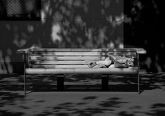 STORIES. The dreaming boy (matoses) Tags: life light shadow white black art texture textura blancoynegro blanco luz dark bench children grey gris blackwhite nikon arte y sleep negro dream banco sombra nios vida future imagine dormir generation sueo futuro oscuro imagina black white generacion d80 blanco negro matoses