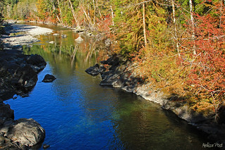 Autumn Reflections on the Queets River
