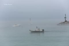 Fog over lake Michigan (ElenaK@Chicago) Tags: fog harbor boats lakemichigan