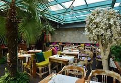 -bicolor -gray limestone interior wall, Resido, restaurant in Brashov, Romania (odedrobinson) Tags: bar restaurant bej gri perete wall romania brasov coffee shop