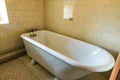 _NIK7064 (EyeTunes) Tags: asheville biltmore northcarolina garden nc hotel mansion museum