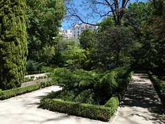 Real Jardn Botnico / Royal Botanic Gardens (Rafa Gallegos) Tags: realjardinbotnico madrid espaa spain naturaleza nature royalbotanicgardens