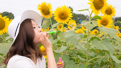 Young girl blowing soap bubbles in sunflower field (Apricot Cafe) Tags: asianethnicity canonef1635mmf28liiusm japan kanagawa enjoy happiness nature oneperson outdoor refresh strawhat summer sunflower traveldestinations vacation walking weekendactivities woman youngadult zamashi kanagawaken jp img647259